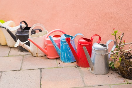 concept of gardening and hobby - A row of watering can