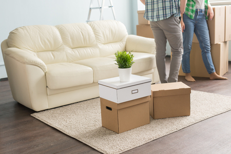 moving boxes on carpet infront of young couple and sofa 스톡 콘텐츠 - 105093415