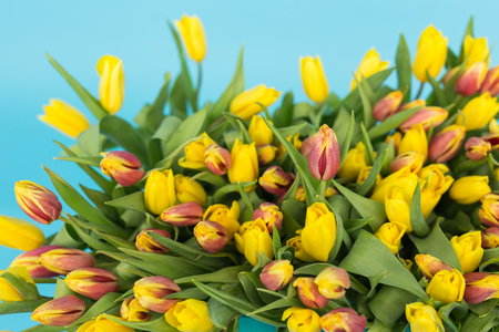 Floristics, holidays and flowers concept - a big bouquet of red and yellow tulips on blue background