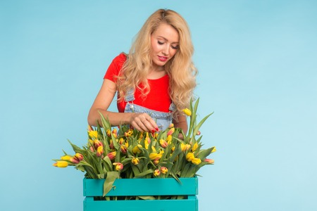 Charming blonde female florist sorts out tulips in the box, selects them for the future flower arrangement Banco de Imagens