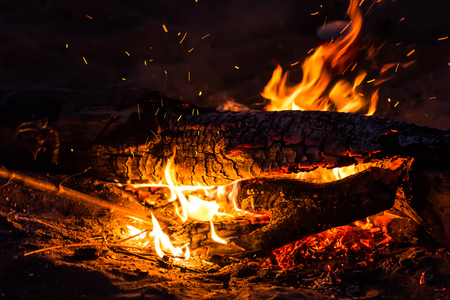 Night, tourism and nature concept - burning log and fire