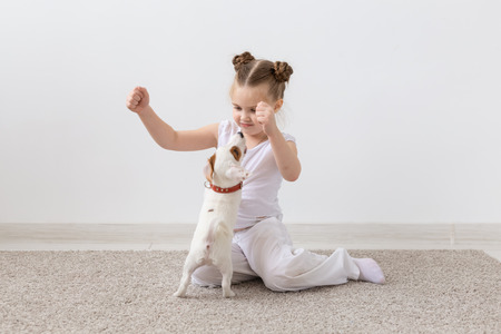 Pets owner, children and dogs concept - little girl sitting on the floor with cute Jack Russell Terrier puppy and playing 스톡 콘텐츠