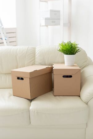Boxes with things and a flower in the pot stand on the couch during the move of residents to a new apartment. The concept of home buying and the hassle of moving