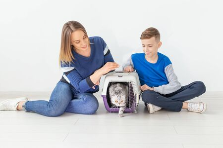Positive good-looking mother and son launch their beautiful gray Scottish Fold cat into their new apartment after the move. Housewarming concept. Stock Photo