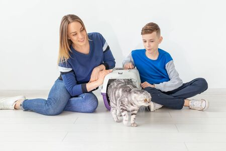 Positive good-looking mother and son launch their beautiful gray Scottish Fold cat into their new apartment after the move. Housewarming concept. Standard-Bild