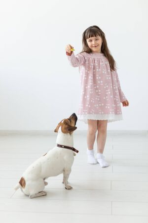 Positive little girl in a pink dress playing and feeding her little dog Jack Russell Terrier on a white background. The concept of favorite animals and dogs. Copyspace.