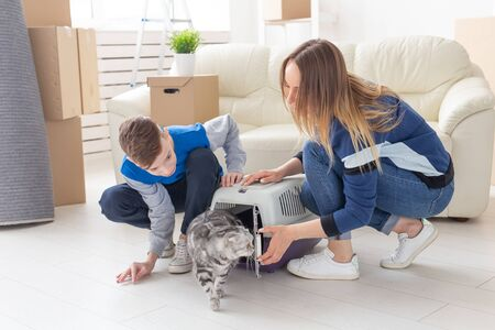Slim young mother and little son launch their beautiful gray Scottish Fold cat into their new apartment in the living room. The concept of tradition with housewarming. 版權商用圖片