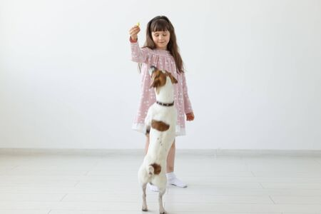 Little child girl in a pink dress plays with her dog Jack Russell Terrier