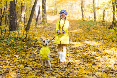 Child plays with Jack Russell Terrier in autumn forest. Autumn walk with a dog, children and pet concept. 版權商用圖片 - 155230290