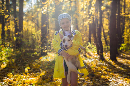 Little girl with a dog jack russell terrier. Child, childhood, friendship and pet concept. Small dog walking in the autumn park. 版權商用圖片