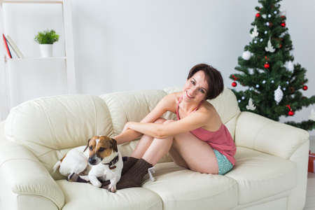 Happy woman with dog. Christmas tree with presents under it. Decorated living room 版權商用圖片 - 155319578