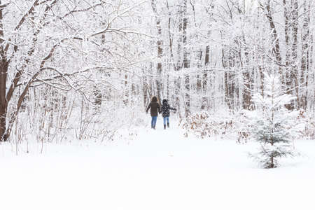 A young and beautiful couple is having fun in the snowy park, running and holding hands. Valentines Day concept. Winter season. 版權商用圖片
