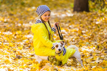 Portrait of a little girl on a background of orange and yellow leaves in an autumnal sunny day. Little puppy jack russell terrier. Pet and child concept. Friendship.