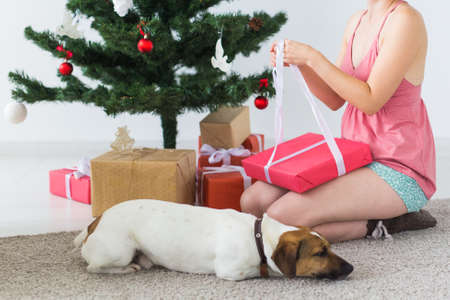 Close-up of woman with dog opening Christmas gifts. Christmas tree with presents under it. Decorated living room