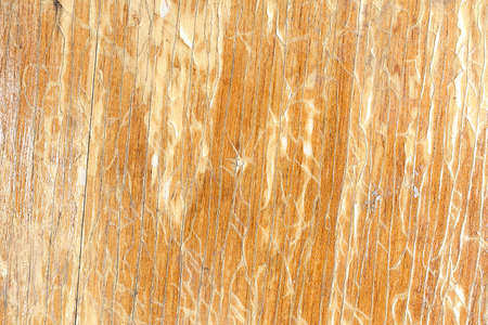 Grunge background. Peeling paint on an old wooden floor. Vintage wood background. Old wood texture
