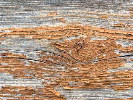 Grunge background. Peeling paint on an old wooden floor. Vintage wood background. Old wood texture Stok Fotoğraf - 159528641