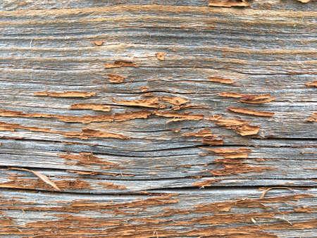 Grunge background. Peeling paint on an old wooden floor. Vintage wood background. Old wood texture Stok Fotoğraf - 159529243