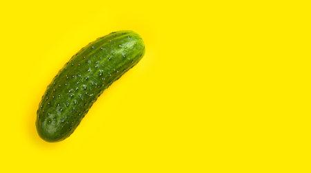 Fresh cucumber isolated on yellow background