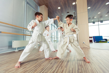 female clothing: young, beautiful, successful multi ethical karate kids in karate position