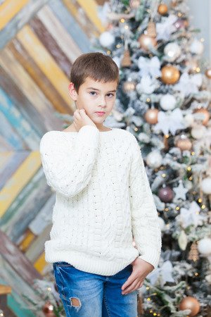 Christmas concept, male fashion. Handsome young boy in elegant pullover posing in luxurious apartments decorated for Christmas. Hairstyle.