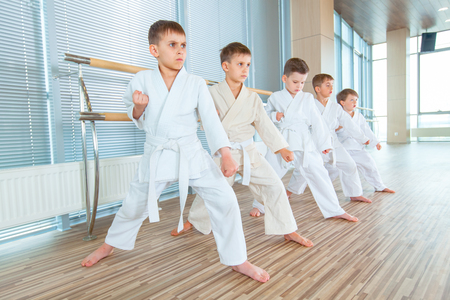 young, beautiful, successful multi ethical kids in karate position Banco de Imagens - 99483568