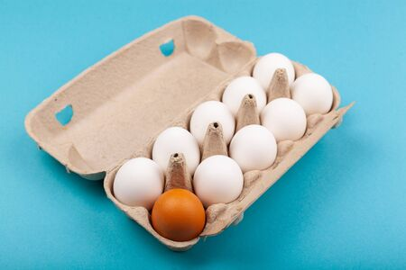 Egg Chicken eggs. Top view of an open gray box with white eggs Isolated on a blue background. One egg of a different color, a brown egg. The concept of focus, an outcast, not like everyone else