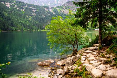 morskie: Amazing Mountains Lake. Fragment of Mountain Lake Trail. Morskie Oko in Tatry, Poland.