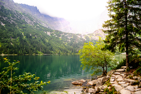 Amazing Mountains Lake. Fragment of Mountain Lake Trail. Morskie Oko in Tatry, Poland Stock Photo