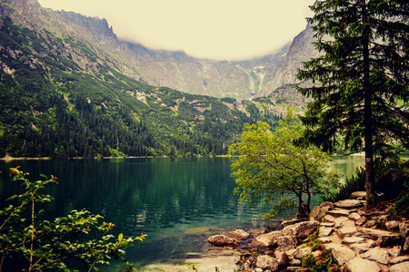morskie: Amazing Mountains Lake. Fragment of Mountain Lake Trail. Morskie Oko in Tatry, Poland. (Filtered image:cross processed vintage effect) Stock Photo