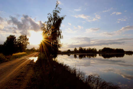 Evening way through the birch and lake Stock Photo