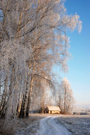 Winter road in the village through a small bath Stock Photo - 8796501