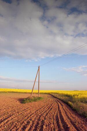 ecodiesel: Spring evening plowing between flowering fields Stock Photo