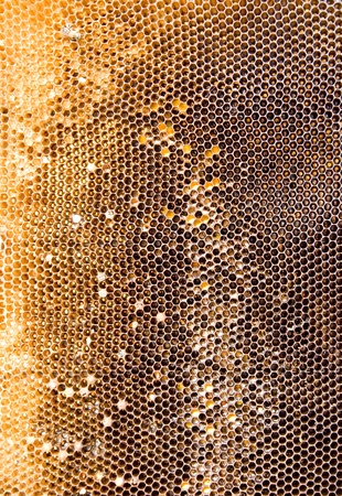 Used dirty honeycomb textures of golden brown color