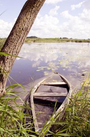 Drown forgotten boat near lake coast. Lake shore on a sunny day. Stock Photo