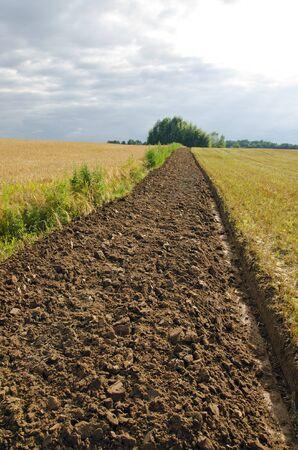 furrow: Freshly plowed field furrow. Fertile soil in the field.