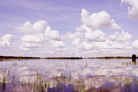 Beautiful view of summer lake flora, clouds and forest in distance in sunny day. photo