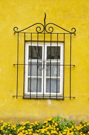 House window with a decorative protective grating. Yellow wall and flowers.