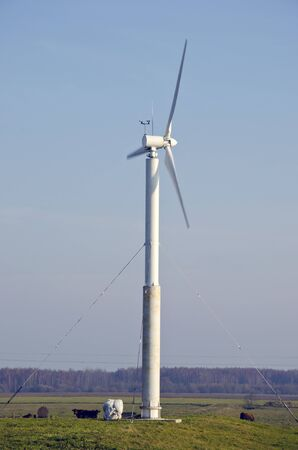 Rotating windmill in village, and cows grazing around it. Wind renewable energy. photo