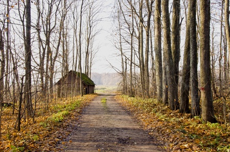 Old village abandoned house near gravel road and trees without leaves in autumn. Stock Photo