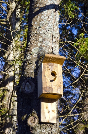 Newly nailed wooden bird nesting-box attached to tree trunk. photo
