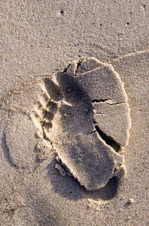 Bare feet imprint on wet beach sand. Natural seaside background.