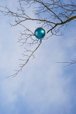 Lonely blue christmas toy covered with snow hanging on tree without leaves. photo