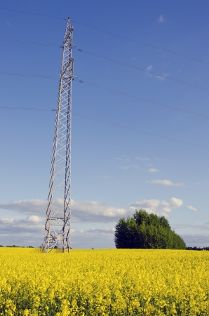 High voltage electric pole and wire on background of agricultural rape fields and blue cloudy sky  Power and energy industry   Stock Photo