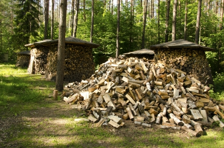 Small woodshed roof under stacked firewood. Pile of chopped wood near forest trees.  Stock Photo