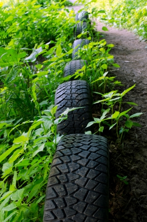 Forest path strengthen with old used car tires  Interesting decoration  Nature pollution