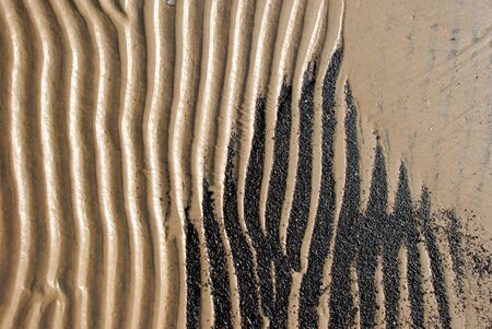 Background of the sea shore fragment  Sea sand waves form at the coast  Stock Photo