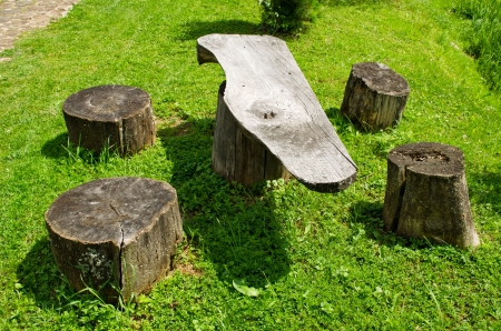 Table and chairs made of wood trunk stumps  Place for rest   photo
