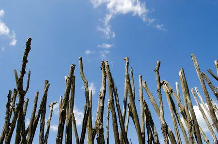 Omheining gemaakt van takken op de blauwe bewolkte hemel achtergrond Stockfoto - 14583423