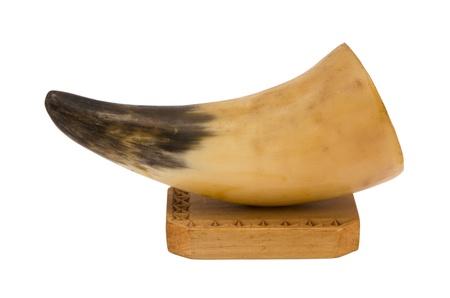predator animal fang tusk elephant ivory on wooden board decoration isolated on white background   Stock Photo