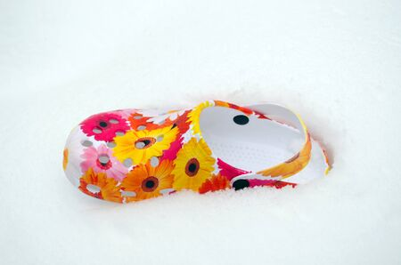 snowbank: colorful slipper mule scuff with flowers lie on snow in winter snowbank.